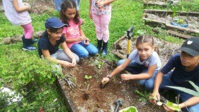 Niños sembrando plantas en una huerta orgánica