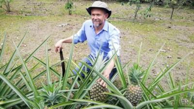 Hombre con sombrero agachado al lado de plantas y frutos de piña