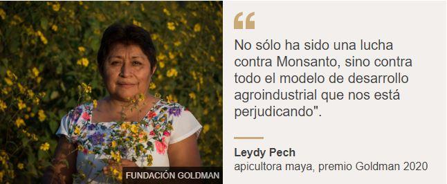Leydy Pech, apicultora maya