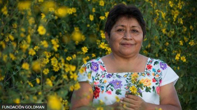 Leydy Pech, indígena maya defensora del ambiente en México