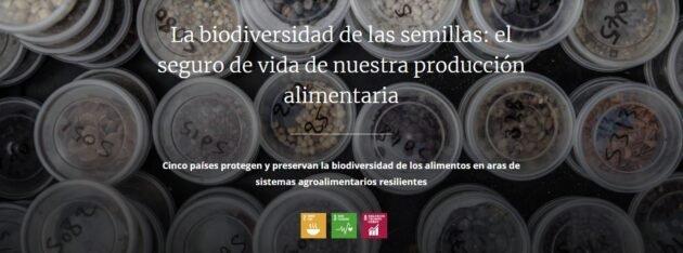 Biodiversidad de semillas