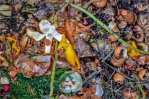 Residuos sólidos orgánicos de jardín y cocina para compostar