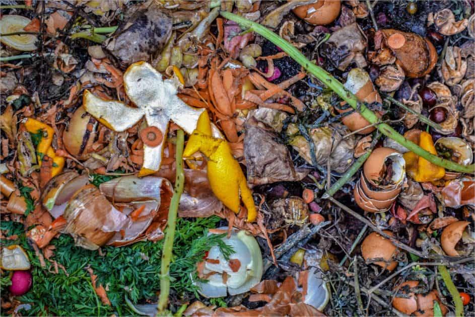 Residuos orgánicos de cocina y jardín en compostaje